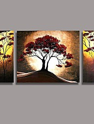 Hand Painted  Oil Painting Landscape with Stretched Frame Set of 3