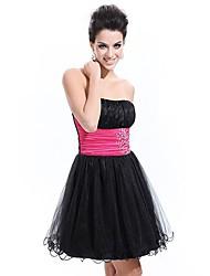 Vestido de Festa bonito Strapless Preto Pedrinhas Organza Ever-bonitas da Mulher