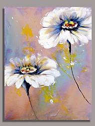 Mão pintura a óleo da flor moderna, com quadro esticado pronto para pendurar Pintado
