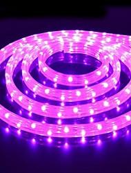 Reallink ® Destaque Auto LED Strip Grille Com luzes Atmosfera 5 metros 300SMD Decoração Lamp 12V