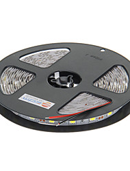 z®zdm 5m 72W 300x5050smd lâmpada de luz branca tira conduzida cool (DC 12V)