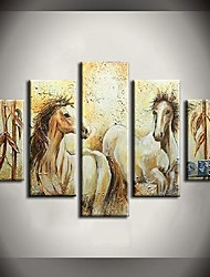 Hand Painted Oil Painting Run to The Horse Hill Animals Paintings with Stretched Frame Set of 5