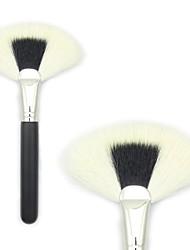 Large Fan Brush  Broom Brush