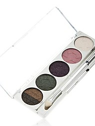 Pro 5 Color Shining Warm Earth Eyeshadow Cosmetic Makeup Palette with Eye Brush