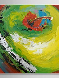 Hand Painted Oil Painting Abstract A Green Apple with Stretched Frame