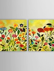 Hand Painted Oil Painting Floral Wild Flowers Home Decor with Stretched Frame Set of 2