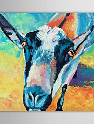 Hand Painted Oil Painting Animals Heifer with Stretched Frame