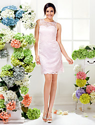 Lanting Bride® Knee-length Lace Bridesmaid Dress Sheath / Column Jewel Plus Size / Petite with Ruching