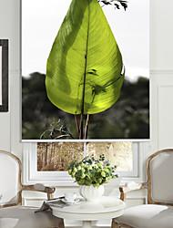Modern Art Style Green Leaf Roller Shade