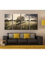 Personalized Canvas Prin Stretched Canvas Art Grassland Scenery Set  30x60cm  40x80cm  50x100cm  Gallery Wrapped Art  of 4