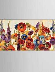 Huile peinte à la main Peinture Fleurs Et Plantes Fleurs avec cadre étiré