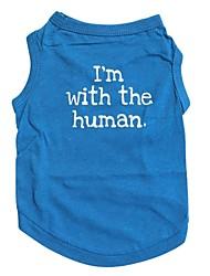 Chat / Chien T-shirt Bleu Vêtements pour Chien Printemps/Automne Lettre et chiffre