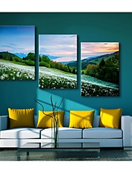Personalized Canvas Print Mountain Flowers  35x50cm  40x60cm  50x70cm  Framed Canvas Painting Set of 3