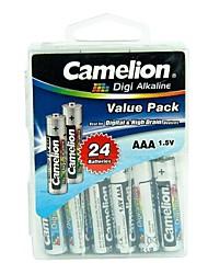 camelion digi pile alcaline AAA dans la boîte de récipient de 24 pcs