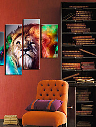 Stretched Canvas Print Art Animal Lion Set of 4