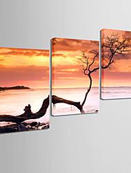 Toiles Art Paysage de toucher le ciel Ensemble de 3