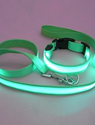 Fashion Night LED Flash collars and leashes for Pets Dogs (Assorted Size,Assorted Color)