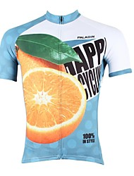 PALADIN Cycling Tops / Jerseys Men's Bike Breathable / Ultraviolet Resistant / Quick Dry Short Sleeve 100% Polyester Nature & Landscapes