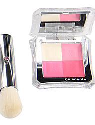 4 Color Mix Hot Sale Blush with Brushes