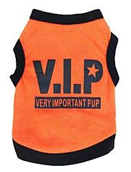 Chat / Chien T-shirt Orange / Noir Vêtements pour Chien Printemps/Automne Lettre et chiffre