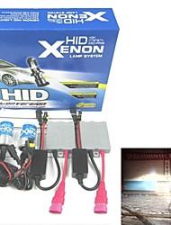 borsee ® HID-Xenon-Lampe H1 12V 55W ac Automobil Xenon-Set (zufällige Farbe)