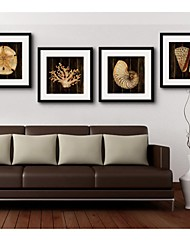 Framed Canvas Art, Benthos  Framed Canvas Print Set of  4