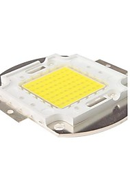 70w 6300lm 3000k warm wit led-chip (30-35v)