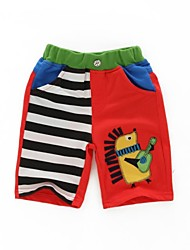 Boy's Cotton Shorts , Summer