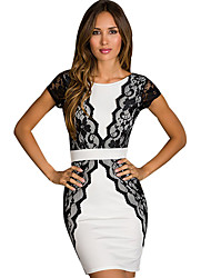 Sweet Women's Round Neck Lace Bodycon Dress