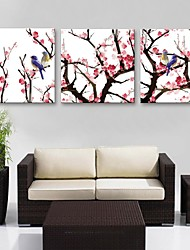 E-HOME® Stretched Canvas Art Plum Branches Birds Decoration Painting Set of 3