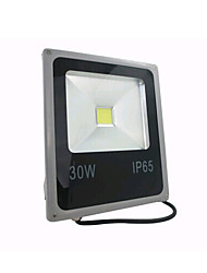 30W 1 High Power LED 2400 LM Warm White / Cool White LED Flood Lights AC 85-265 V