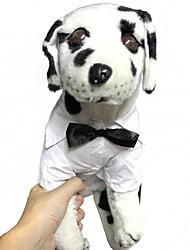 roupas de poliéster vestido casual para animais de estimação cães