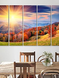 E-HOME® Stretched Canvas Art Mountains And Trees Decorative Painting  Set of 5