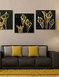 е-Home® растягивается во главе Печать холст искусство цветок эффект вспышки привело набор 3