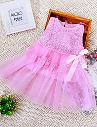 Girl's Lace Dress , Summer/Fall/Winter/Spring Sleeveless