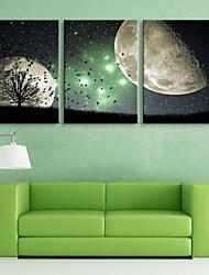 E-HOME® Stretched LED Canvas Print Art The Night Scene Flash Effect LED Flashing Optical Fiber Print Set of 3