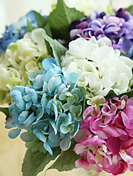 Emulational Lovely Little Hydrangea