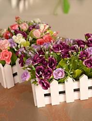 """6,3 """"6,3"""" l h belles roses multicolores d'or en clôture blanche"""
