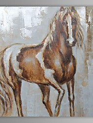 Oil Painting Modern Abstract Horse Hand Painted Canvas with Stretched Frame