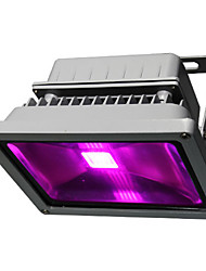 Waterproof 30w Led Plant Grow Light