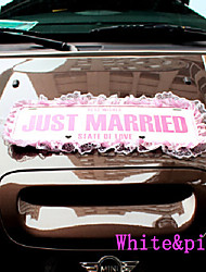 Just Married Wedding Car Decorations