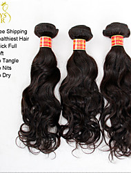 "3Pcs Lot 12""-28"" Unprocessed Brazilian Virgin Hair Water Wave Wavy Natural Black Remy Human Hair Weave Wefts Tangle Free"