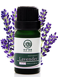 Indoor Humidification Lavender Essential Oil