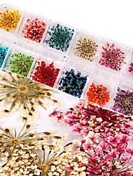 12 Color Flower/Wedding Finger/Other Decoration kit Other 24PCS