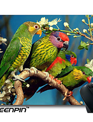 seenpin personalizado mouse pads quatro papagaios projeto