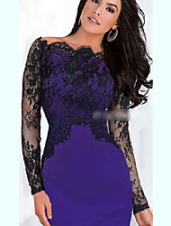 Women's Lace Long Sleeve Dresses (Lace/Polyester)