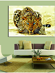 Leopard Canvas Print Ready to Hang