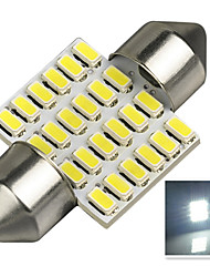 1.9W 12-24V 250LM DA31MM  3014-24SMD C5W Color White License Plate and Tail Box Lighting LED Lamp for Car