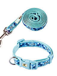 Chien Colliers Bleu Nylon