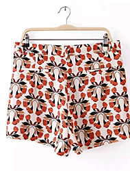 Women's New Fashion Summer High Waist Sexy/Print Inelastic Medium Shorts Pants (Microfiber)